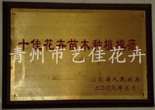 2009年十佳花卉苗木種植模范獎